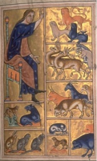 Adam Naming the Animals in the Aberdeen Bestiary