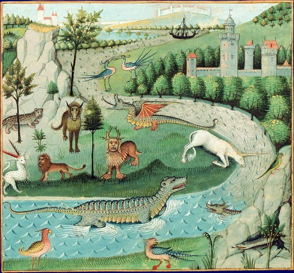 Book of Nature BNF MS Français 22971 f 15v
