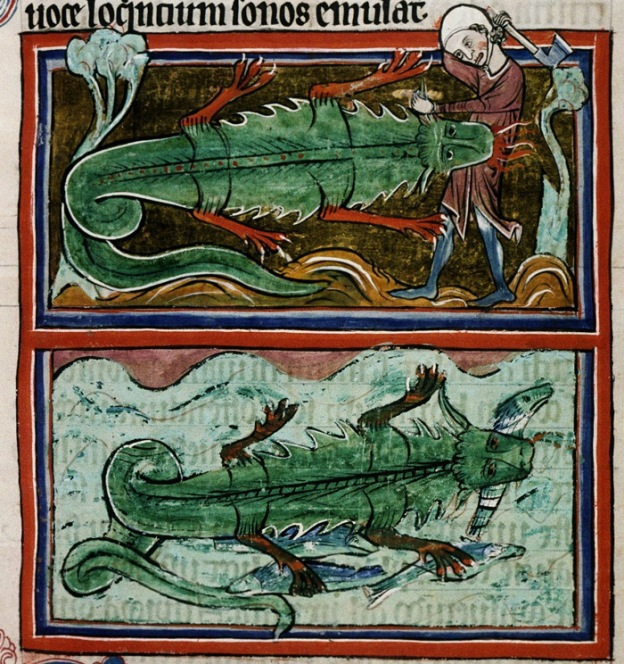 croc Bodleian Library, MS Bodley 764, Folio 24r