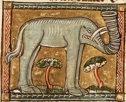 elephant Koninklijke Bibliotheek, KB, KA 16, Folio 54r